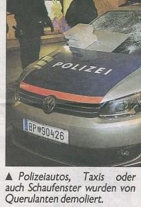 """(c)""""Kronen Zeitung"""" vom 25.01.2014, Wien-Ausgabe, Seite 12"""